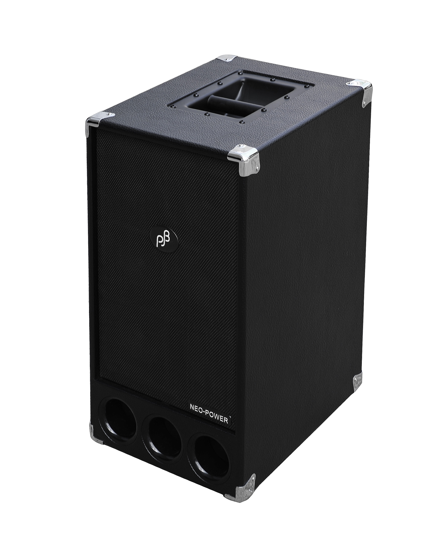 Phil Jones Bass PB-300 купить в магазине musictrade.pro