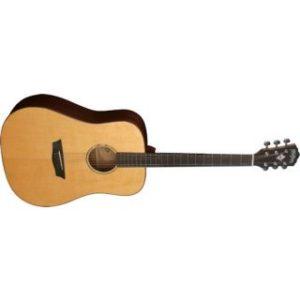 Washburn  WD250 SW Акустическая гитара