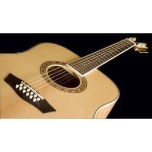 Washburn  WD30 S Акустическая гитара