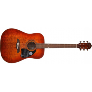 Washburn  OG2 FYS Акустическая гитара