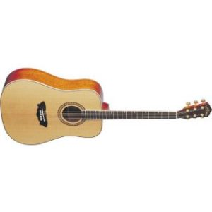 Washburn WD32 SW Акустичесая гитара